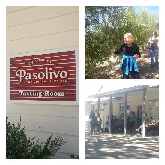 Pasolivo Olive Farm Tour