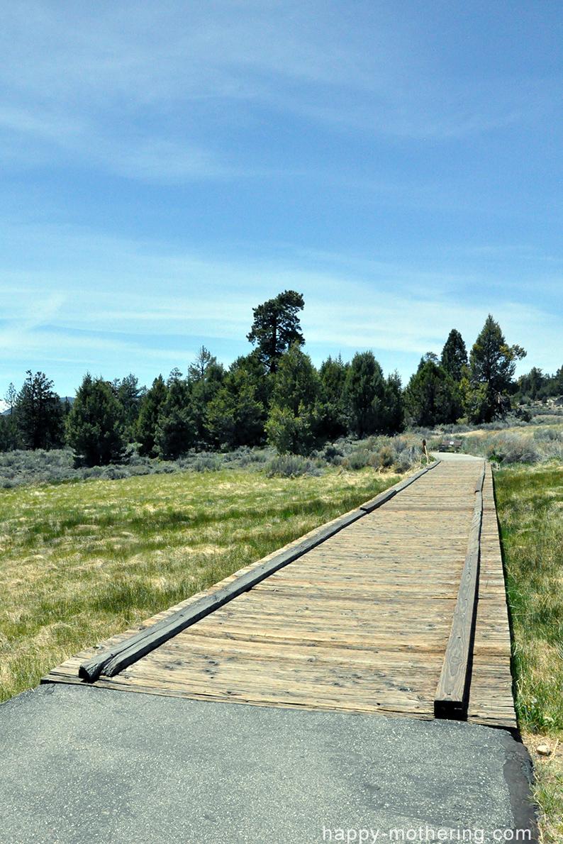 Walking bridge at Alpine Pedal Path in Big Bear Lake, CA