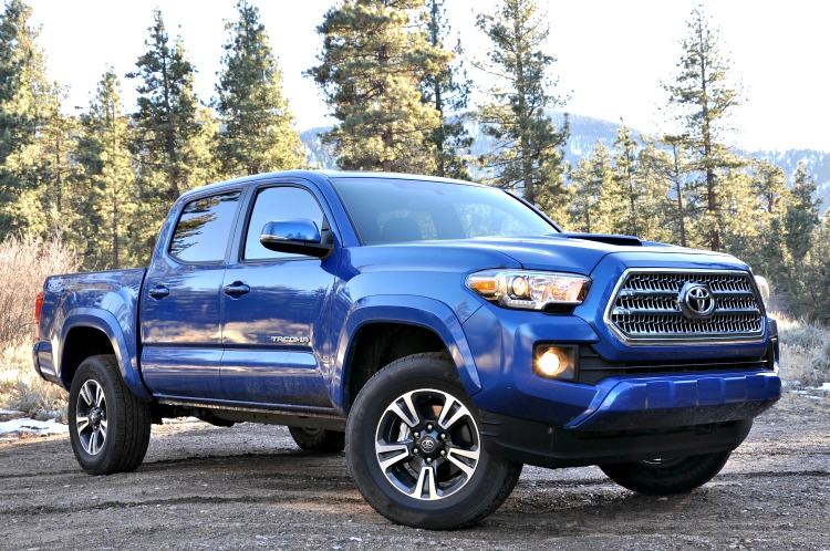 Front angle view of blue Toyota Tacoma in front of the forest