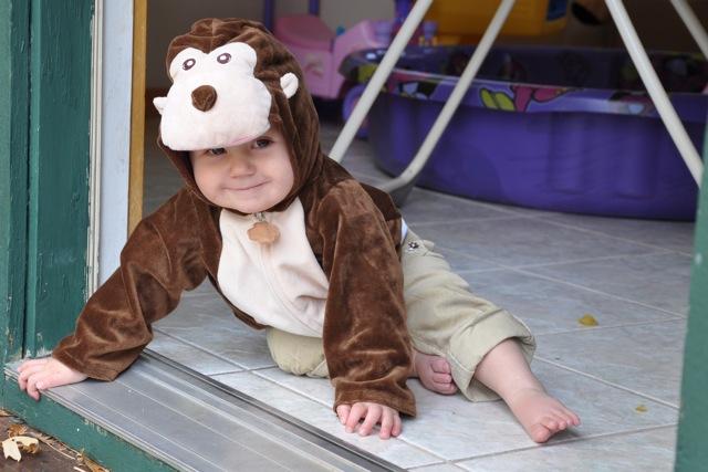 Kaylee as a monkey on Halloween