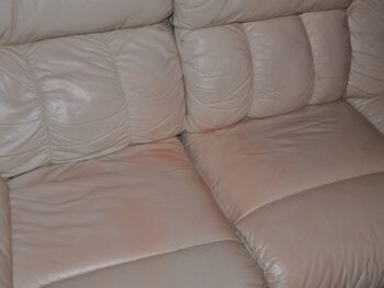White leather couch colored by watermelon