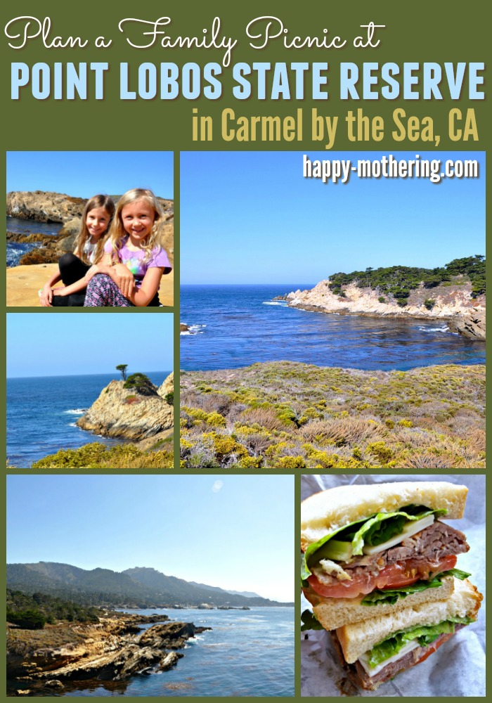 Collage of images from Point Lobos State Park