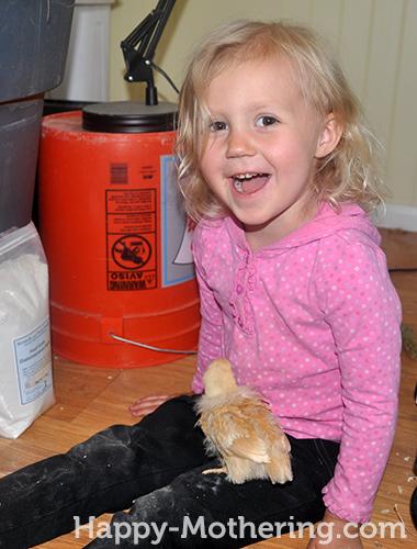 Kaylee holding a Buff Orpington chick