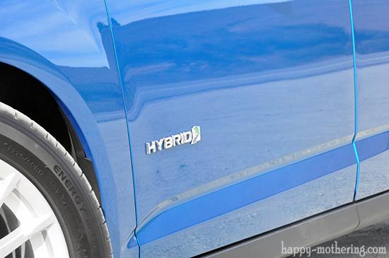 Ford C-Max Hybrid door