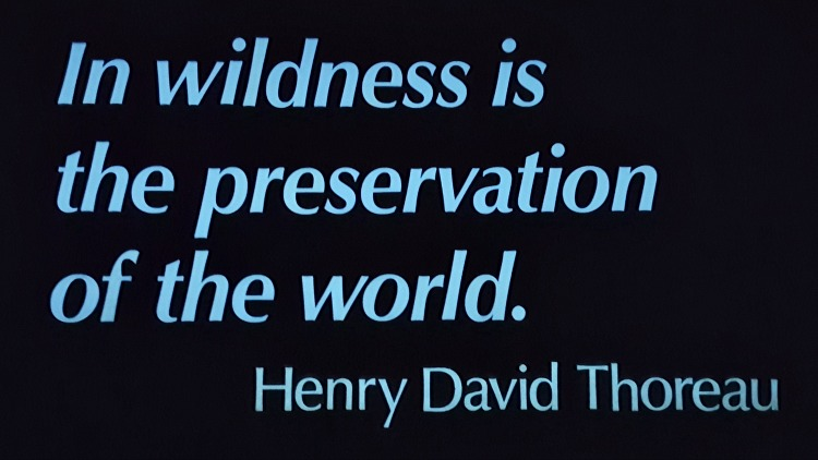 "Sign that says, ""In the wilderness is the preservation of the world, "" by Henry David Thoreau"