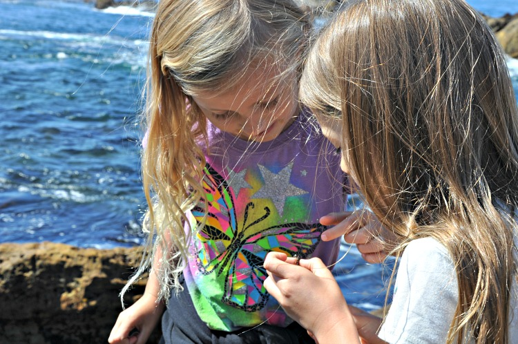 Zoë and Kaylee exploring creatures in the tidepools at Point Lobos State Reserve