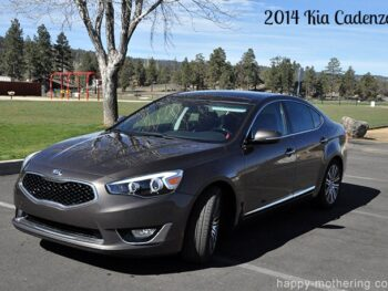Kia Cadenza parked under a tree by the park