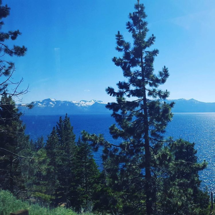 View from the bus coming into Tahoe South